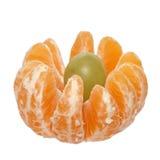 Fiore del mandarino Fotografia Stock Libera da Diritti