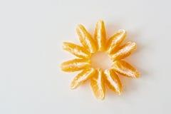 Fiore del mandarino Immagine Stock