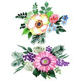 Fiore del mazzo in uno stile dell'acquerello isolato Fotografia Stock