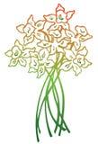 Fiore del narciso royalty illustrazione gratis