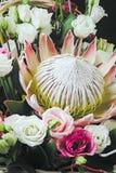 Fiore del Protea in mazzo Fotografia Stock