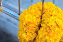 Fiore del tagete all'altare Immagini Stock