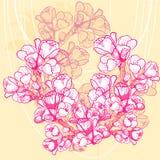 Fiore delicato della molla di vettore su fondo Immagini Stock