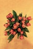 Fiore dell'annata Fotografia Stock Libera da Diritti