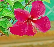 Fiore dell'ibisco della pittura a olio Immagine Stock