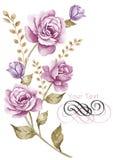 Fiore dell'illustrazione dell'acquerello nel fondo semplice Immagini Stock