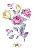 Fiore dell'illustrazione dell'acquerello nel fondo semplice Fotografia Stock