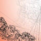Fiore dell'illustrazione di vettore nello stile di disegnato a mano Fotografia Stock