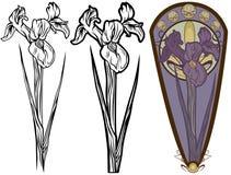 Fiore dell'iride royalty illustrazione gratis