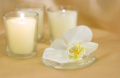 Fiore dell'orchidea con le candele Fotografia Stock