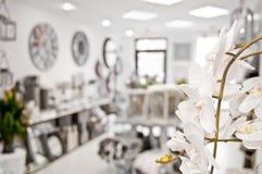 Fiore dell'orchidea in negozio Fotografia Stock