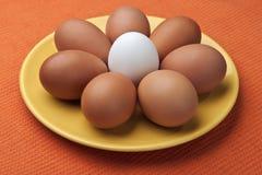 Fiore dell'uovo Fotografie Stock