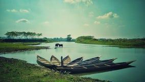Fiore della barca fotografia stock libera da diritti