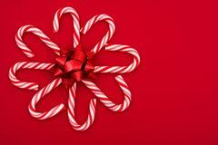 Fiore della canna di caramella Fotografia Stock