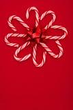 Fiore della canna di caramella Immagini Stock Libere da Diritti