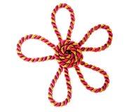 Fiore della corda Fotografia Stock