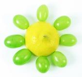 Fiore della frutta Fotografie Stock Libere da Diritti