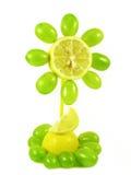 Fiore della frutta su bianco Fotografie Stock