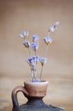 Fiore della lavanda in bottiglia sulla tavola di legno Fotografie Stock Libere da Diritti