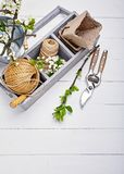 Fiore della molla di floricoltura e di giardinaggio con il giardino fotografia stock
