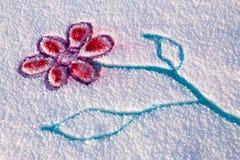 Fiore della neve Immagini Stock Libere da Diritti