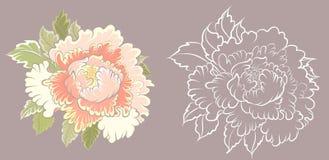 Fiore della pesca per il tatuaggio Vettore cinese del fiore Succo disegnato a mano della pesca con il fiore di ciliegia illustrazione vettoriale