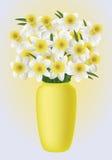 Fiore della primavera - narcissuses Fotografia Stock Libera da Diritti