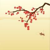Fiore della prugna illustrazione di stock