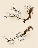 Fiore della prugna con la linea progettazione Fotografia Stock