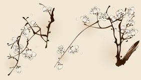 Fiore della prugna con la linea progettazione Immagini Stock
