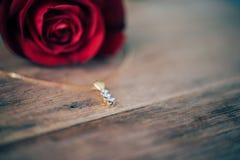 Fiore della rosa rossa sul pavimento di legno nel giorno del ` s del biglietto di S. Valentino Fotografia Stock