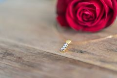 Fiore della rosa rossa sul pavimento di legno nel giorno del ` s del biglietto di S. Valentino Immagine Stock