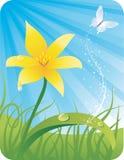 Fiore della sorgente con la farfalla Immagini Stock Libere da Diritti