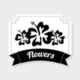 Fiore delle Hawai illustrazione di stock