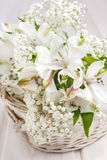 Fiore di Alstroemeria Immagini Stock Libere da Diritti