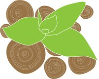 Fiore di bambù illustrazione di stock