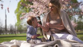 Fiore di ciliegia di Sakura - giovane madre della mamma che si siede con suo figlio del bambino del ragazzino in un parco a Riga, archivi video