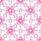 Fiore di ciliegia senza cuciture di rosa del fondo Immagini Stock