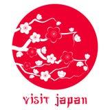 Fiore di ciliegia. Siluetta del ramo di Sakura Immagine Stock