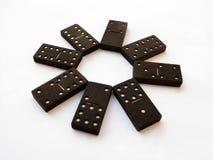 Fiore di domino fotografia stock