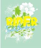Fiore di estate illustrazione di stock