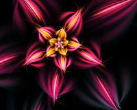 Fiore di frattale. Immagine Stock