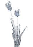 Fiore di ghiaccio Fotografia Stock