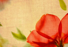 Fiore di Grunge Immagini Stock