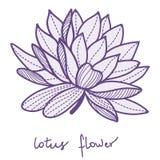 Fiore di loto alla moda royalty illustrazione gratis