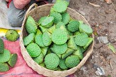 Fiore di loto asiatico degli alimenti del mercato fotografia stock libera da diritti
