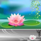 Fiore di loto divino astratto - priorità bassa di vettore Immagini Stock Libere da Diritti