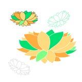 Fiore di Lotus isolato Immagine Stock