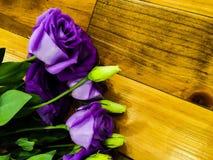 Fiore di Lysianthus su fondo di legno Fotografia Stock
