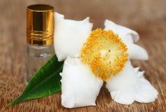 Fiore di Nageshwar del subcontinente indiano con la bottiglia dell'essenza Immagini Stock